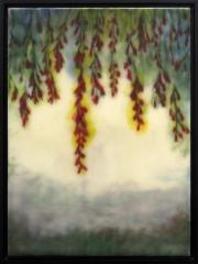 The Hanging Garden 1